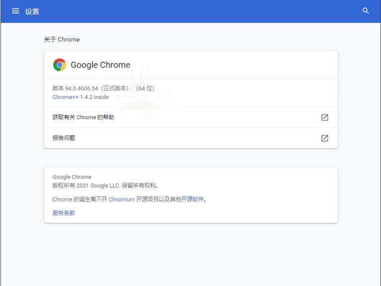 Google Chrome v94.0.4606谷歌浏览器增强版